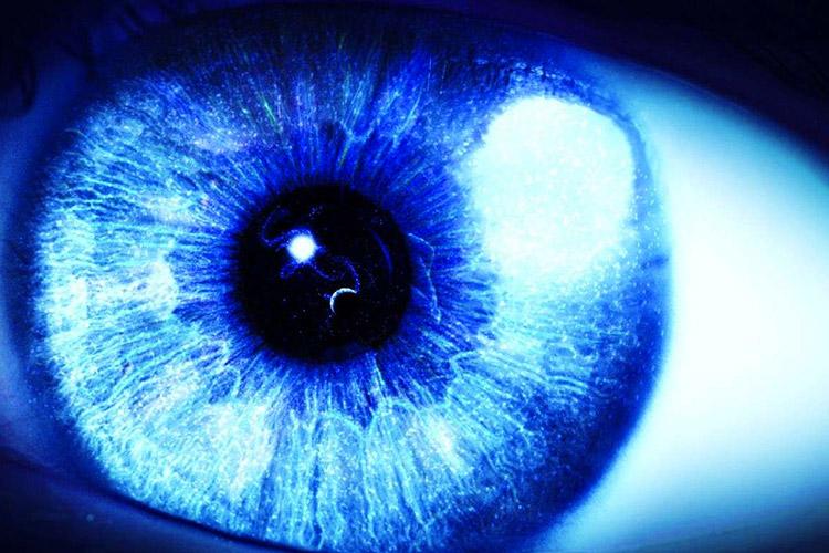 Risultati immagini per luce blu computer VIDEOTERMINALI LUCE BLU OCCHI RETINA TECO MILANO